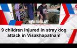 حمله سگ ها به 9 دختر +فیلم